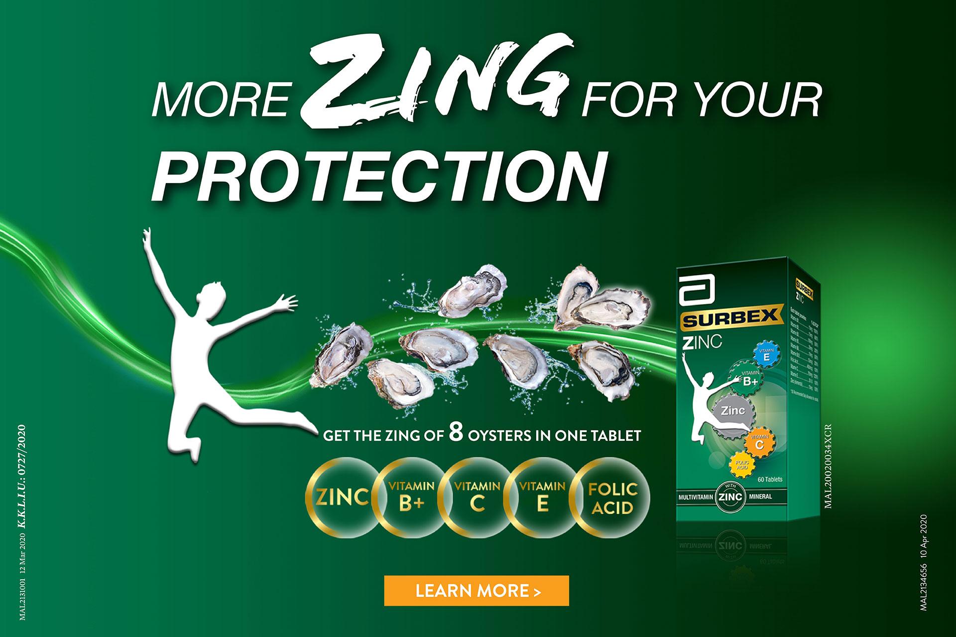 2020 SURBEX Zinc Eng